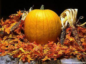 0Pumpkin_Pumpkins_0Webshots_1_007